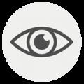 icon-fokus